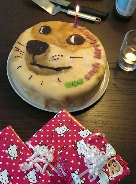 Doge cake